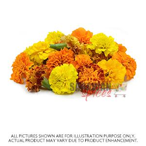 Pooja Flower Chrysanthemum